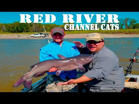 BIG Channel Cats: Red River, North Dakota - Northwoods Angling