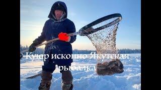 Истинно Якутская рыбалка Куюр