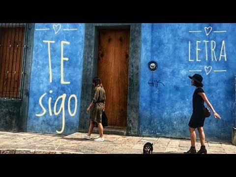 Te Sigo - LETRA / Natalia Lafourcade