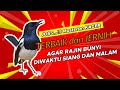 Suara Masteran Kacer Terbaik Dan Jernih Agar Rajin Bunyi Di Waktu Siang Dan Malam Kicau Q  Mp3 - Mp4 Download
