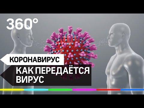 Как передаётся коронавирус