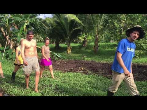 Mahele Farm | Malama Maui