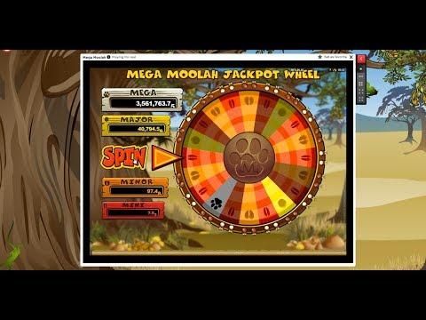 Live Gamble Shocky Banter