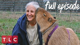 Obsessed With Her Pet Capybara! | My Crazy Obsession (Full Episode)