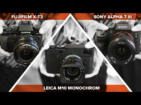 Black & White Test - Leica M10 Monochrom Vs. Fujifilm Vs. Sony