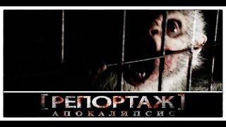 Новый зомби-ужастик «Репортаж: Апокалипсис» («Репортаж 4») / Трейлер на русском