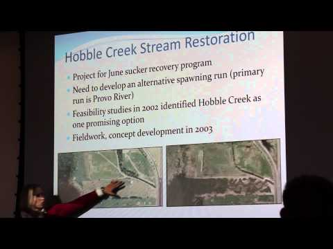 Fluvial Geomorphology & Water Resource Science in the Enviro