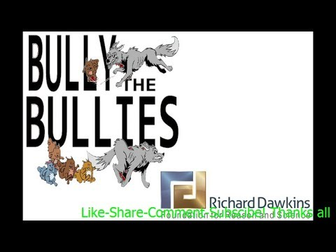 Bully The Bullies  Interview with Joel Guttormson