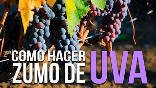 Como hacer zumo de uva casero