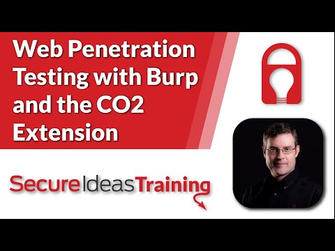 Web Penetration Testing with Burp and the CO2 Extension