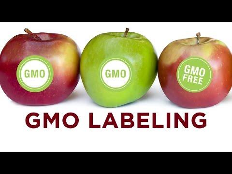 GMO food labeling mini-documentary: Monsanto GMOs