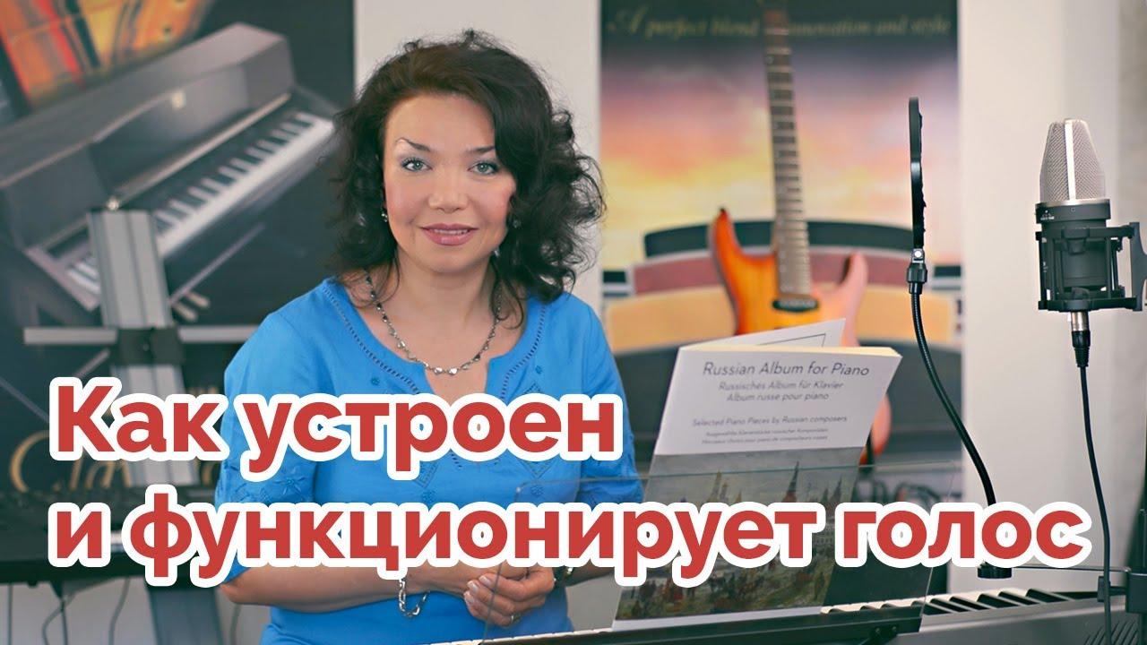Как устроен и функционирует певческий голос # Урок 1 - YouTube