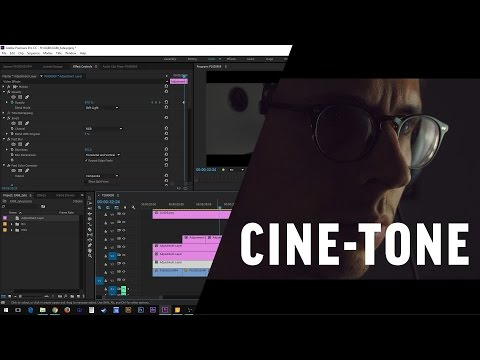 Adobe Premiere Cinematic Tone