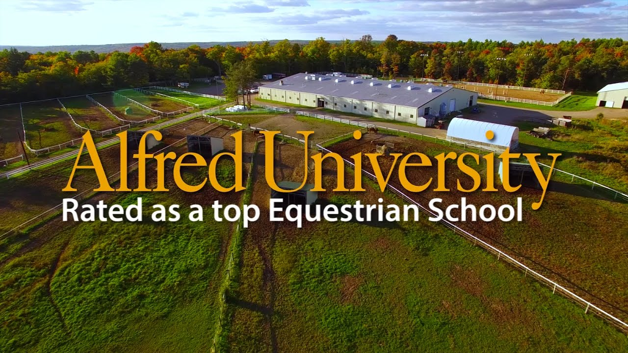 A Top Equestrian School Alfred University Youtube