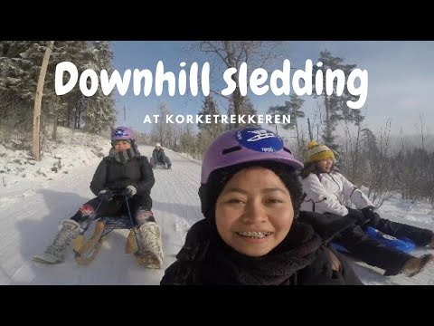 Xtreme Sledding in Oslo Norway || Coolest Winter Craze || Carefree Weekend with Friends