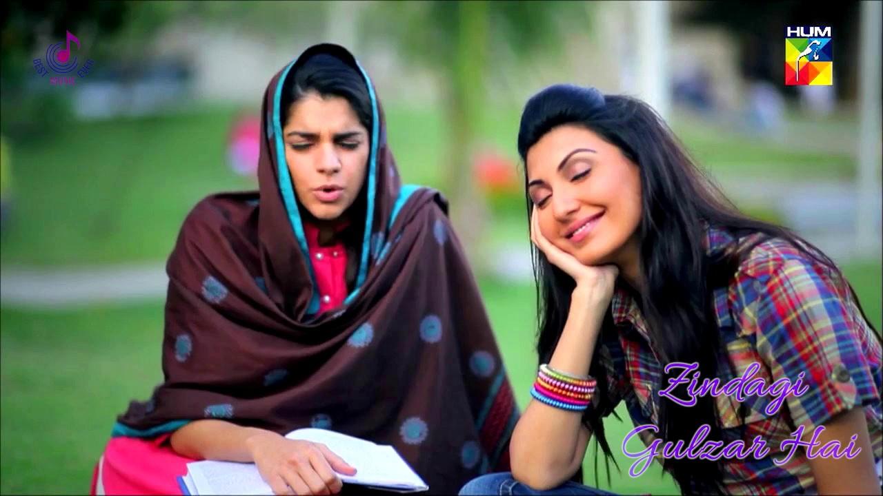 Zindagi Gulzar Hai Title Song (OST) | Ali Zafar | Hum TV ...