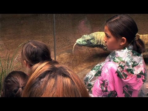 Kate Plus 8 - Australia Zoo Visit