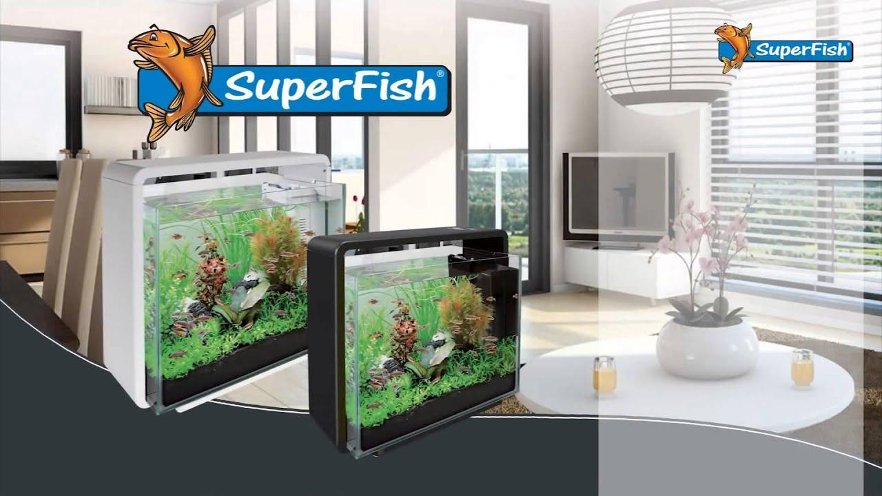 Superfish aquarium fish tank aqua 40 - Superfish Aquarium Fish Tank Aqua 40