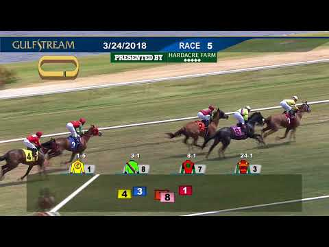 Gulfstream Park Replay Show | March 24, 2018