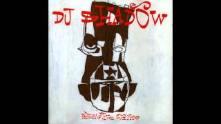 DJ Shadow - Preemptive Strike (full album)