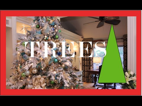 Light a Christmas Tree | Christmas Decorations