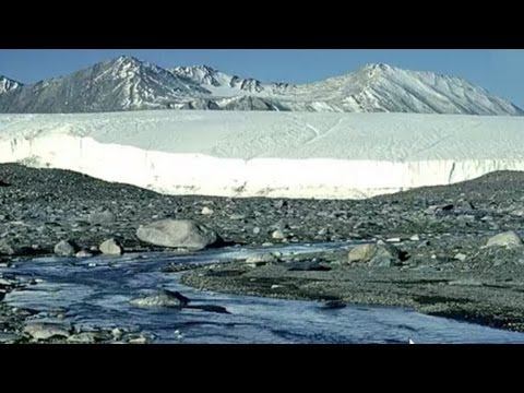 Our Melting Polar Regions: Where Life on Earth is Changing