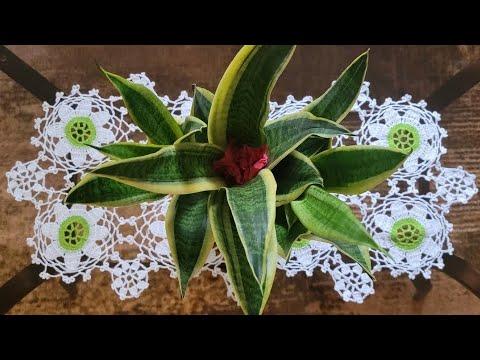 Flor para centro de mesa camino de mesa y mantel doovi - Camino de mesa elegante en crochet ...