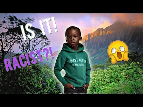 Download Youtube: H&M's Coolest Monkey In The Jungle (Is it really RACIST!? Or Am I RACISTt?)