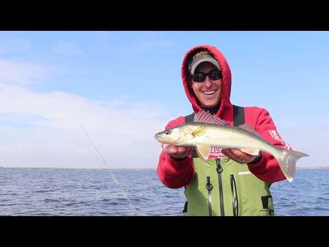 Tactics for Targeting Walleye