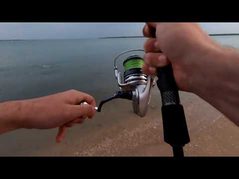 Weipa Fishing: Just Starting Figure It Out