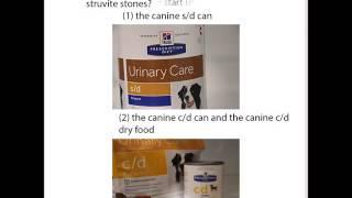 Use a prescription diet to dissolve smaller struvite urinary stones