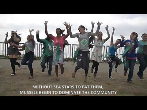 The Sea Star's Lament: Intertidal Community Consequences of Sea Star Wasting Syndrome
