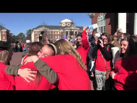 CNU Gamma Phi Beta: Bid Day 2014