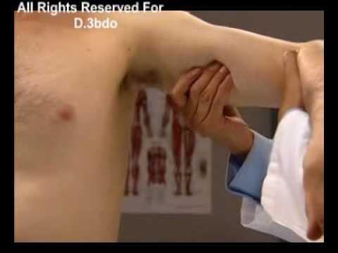 Axillary Lymph Nodes.D.3bdo