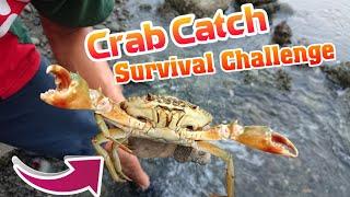 Crab Catch | Bắt Cua Biển Sinh Tồn Khi Thủy Triều Rút và Cái Kết - Lạ Vlog