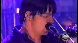 three days grace pain live