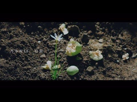 乃木坂46 『日常』Short Ver.