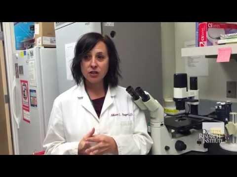 Boosting Regulatory T Cells (Tregs) in Type 1 Diabetes Patients - Diabetes Research Institute