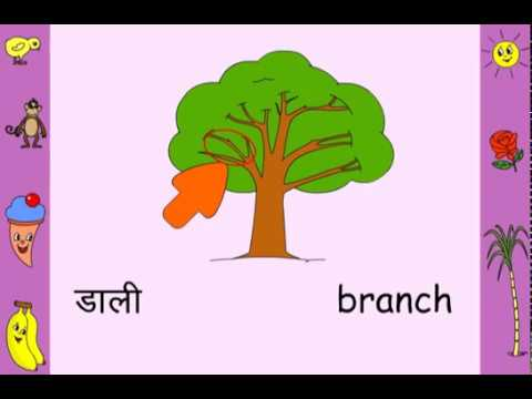 Felling of trees meaning in hindi