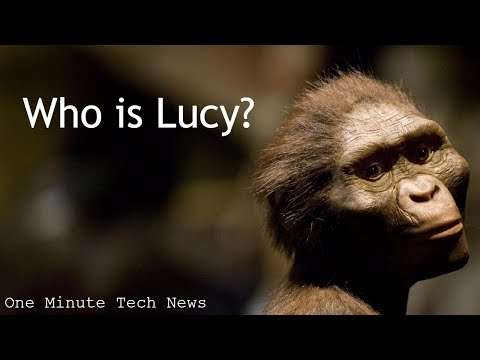 Who is Lucy the Australopithecus? - Google Doodle for her 41st anniversary