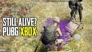 Is PUBG Xbox Still Alive? (Playerunknown's Battlegrounds)