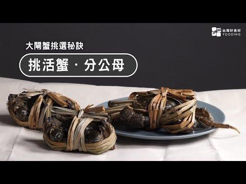 【螃蟹怎麼挑?】挑活蟹、分公母!大閘蟹達人就是你!