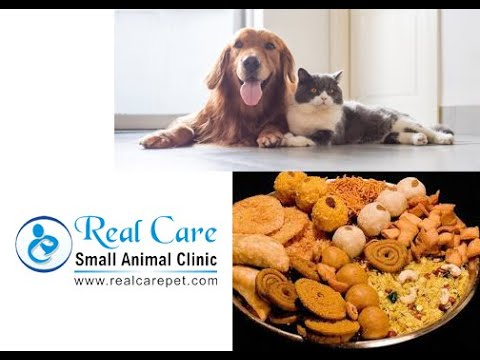 Watch out what your pet eats this Diwali!!!