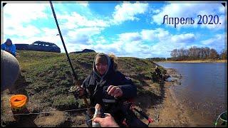 Весенняя ловля вимбы сырть рыбец на фидер Рыбалка на реке Лиелупе
