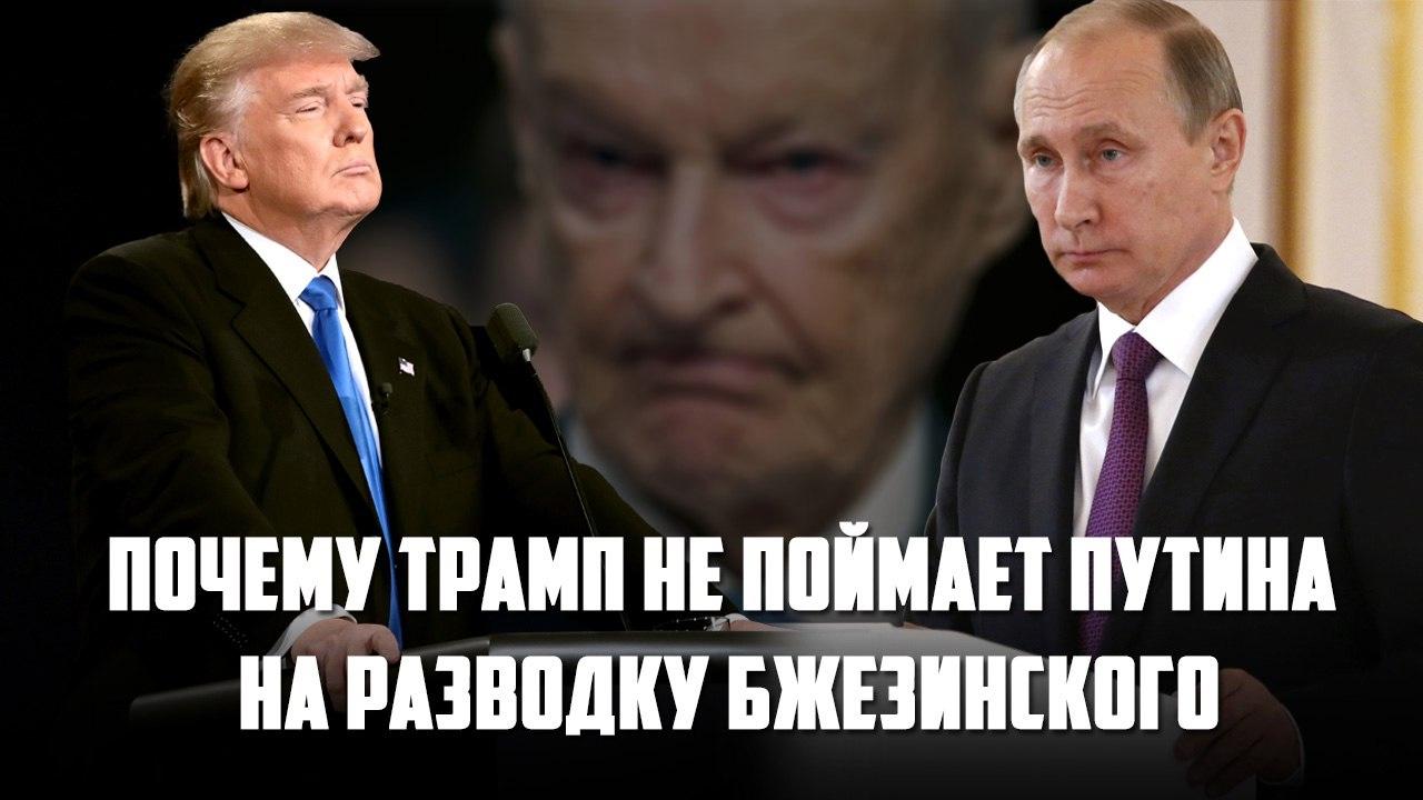 Картинки по запросу Почему Трамп не поймает Путина на разводку Бжезинского