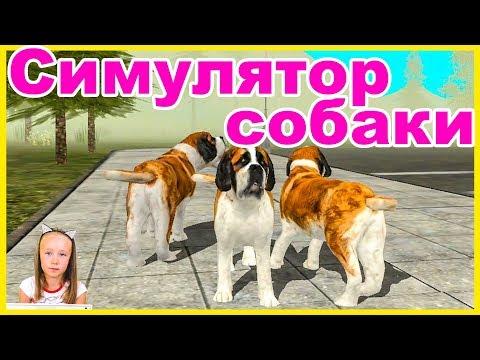 Симулятор собаки. Игра для детей.  Детский летсплей Dog Sim #ЭниБени