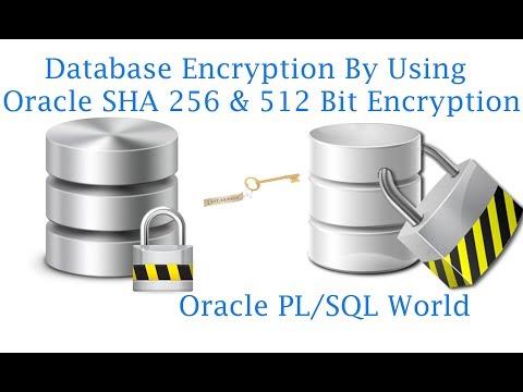 How to use Oracle SHA 256 Bit & 512 Bit Data Encryption Algorithms?