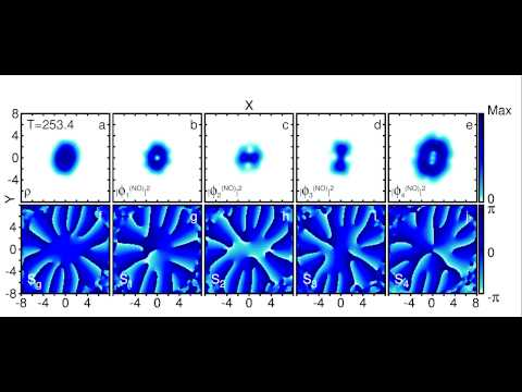 Time evolution of the density, natural orbitals, and Sg