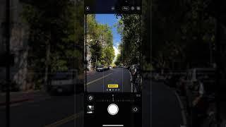 iPhone 13 攝影風格