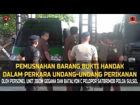 Tim Jibom Gegana Brimob Polda Sulsel Musnahkan Bahan Peledak